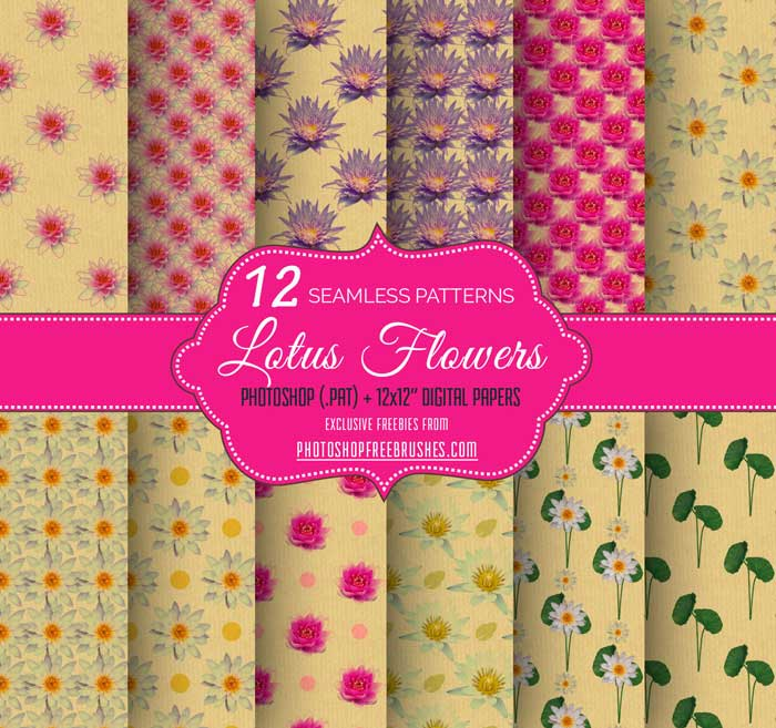 12 Lotus Flower Backgrounds Photoshop Free Brushes