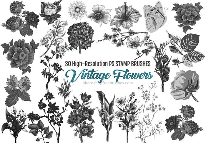30 Vintage Watercolor Flowers Photoshop Brushes | PHOTOSHOP FREE BRUSHES